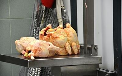 polli su ordinazione
