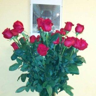 Rose rpsse gambo lungo