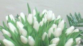 fiorario, fiori recisi, fiori assortiti