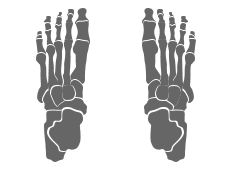 icon orthotic therapy