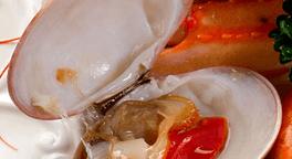 piatti di terra, ampia scelta di vini, antipasti di mare