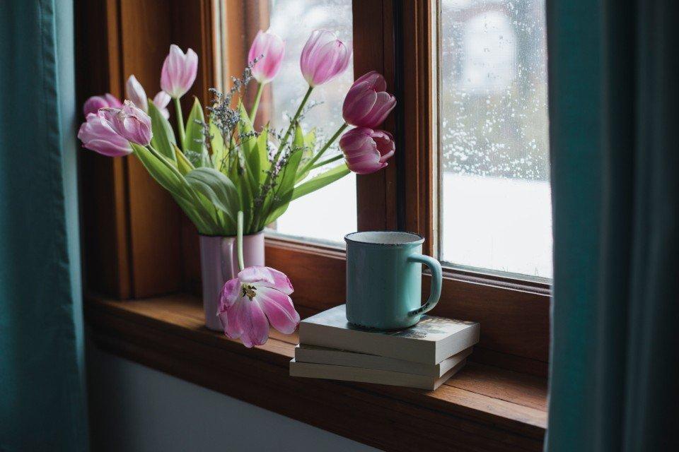 Manti e pareti vegetali bologna fioreria quadri for Alberelli ornamentali