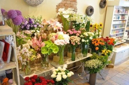 Esposizione fiori recisi