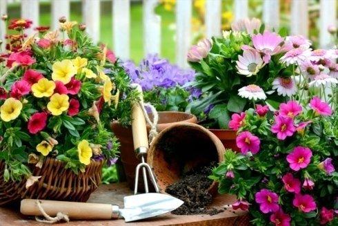 Articoli da giardino