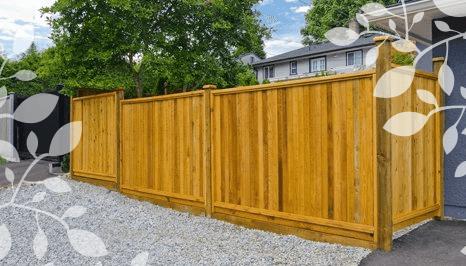 fencing area