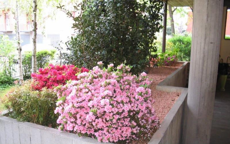 progettazione giardini privati Bologna