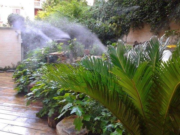 elimina le zanzare
