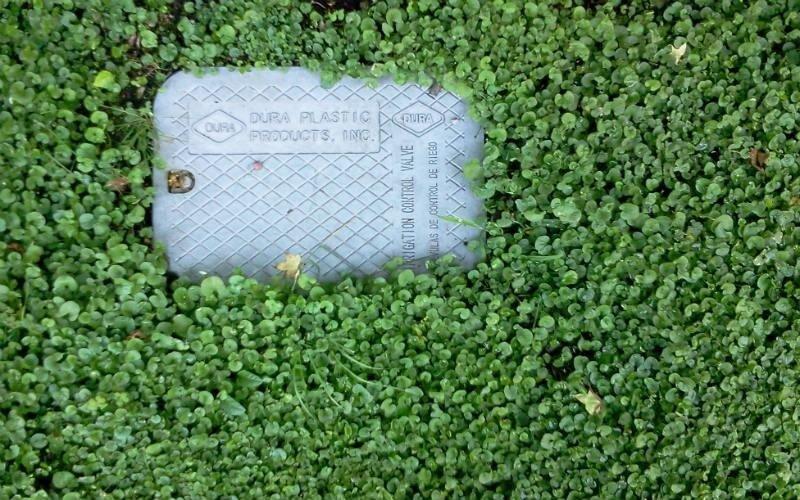 irrigazione automatica per giardini privati