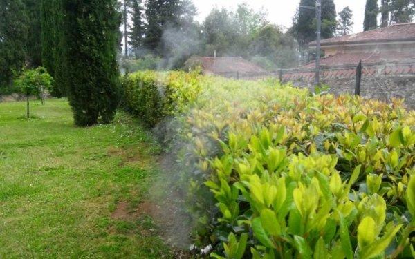 fornitura impianti antizanzare per giardini