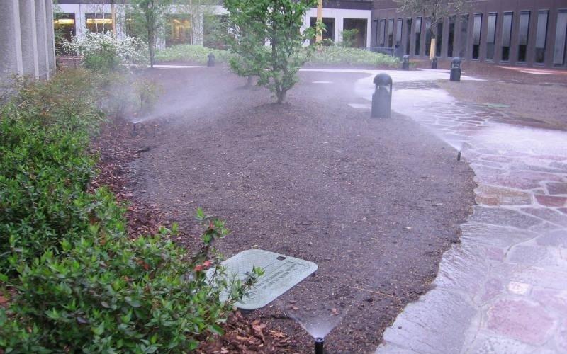 irrigazione automatica per piante