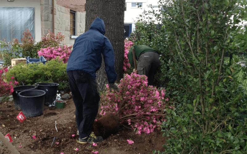 realizzazione giardini emilia romagna