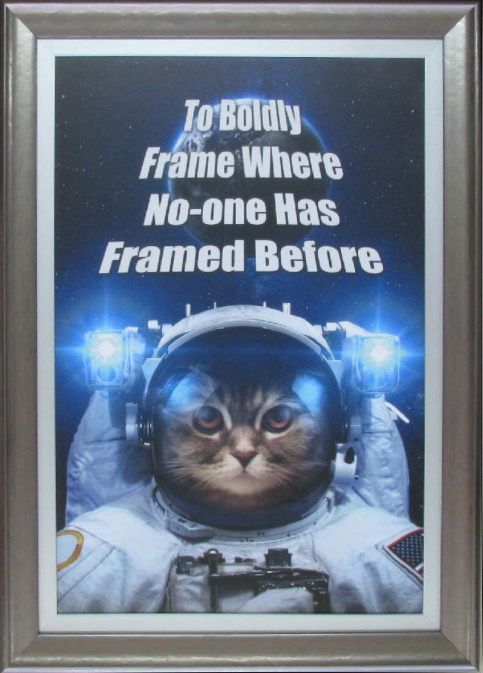 hall of frame cat in the space suit
