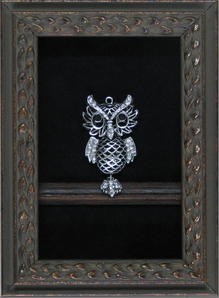 hall of frame edward owl