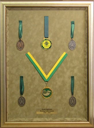 hall of frame framed medals