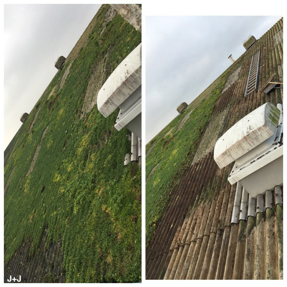Removing Vegetation from Industrial Building
