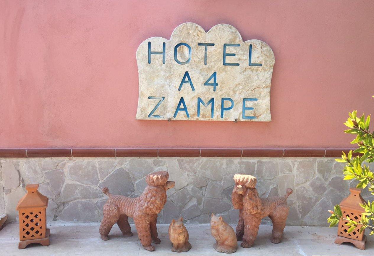 ingresso hotel a 4 zampe