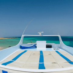 barche personalizzabili