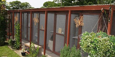 cattery accommodation
