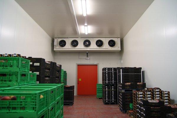 cella frigorifera con ventole contenente casse di frutta