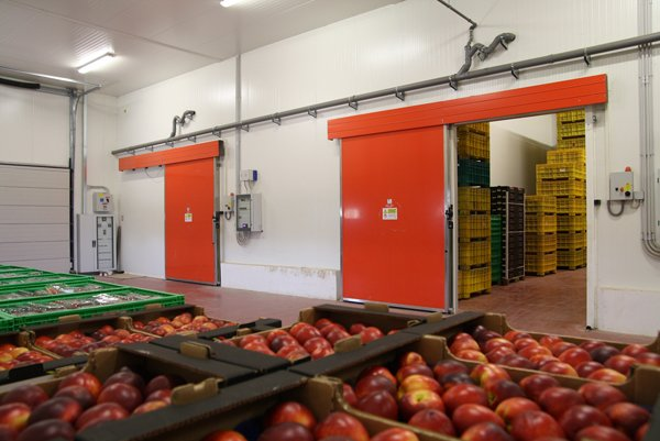 porte arancioni con casse di frutta in primo piano