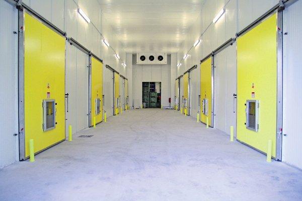 porte gialle in corridoio prospettico