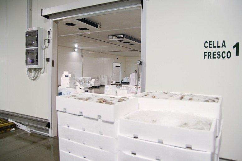 cella frigorifera con etichetta sulla porta con scritto cella fresco 1