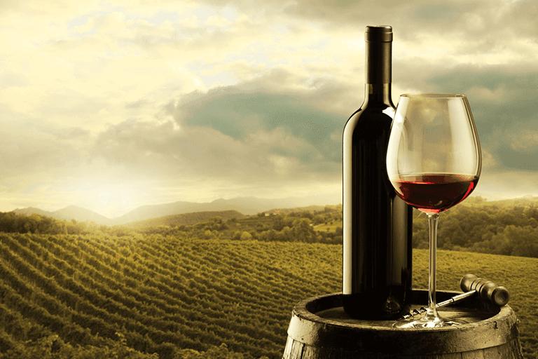 Wine tasting in the Chianti