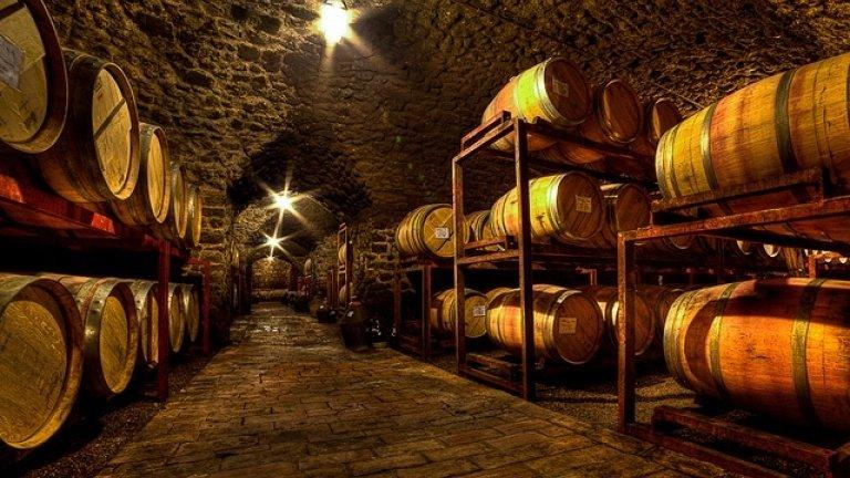 Wine cellar visits