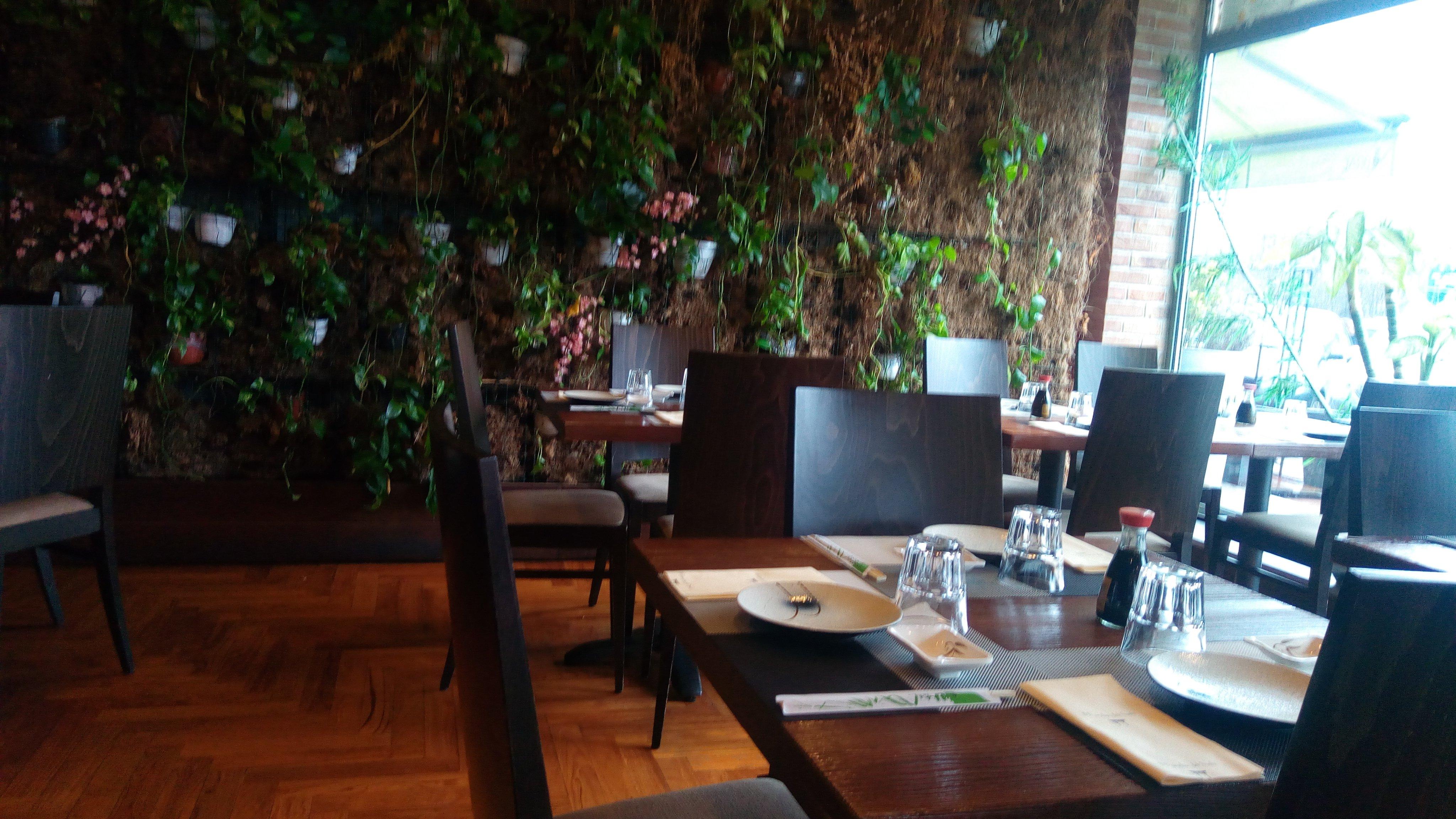 vista di una parete di terra con dei vasi di fiori e piante e i tavoli all'interno del ristorante