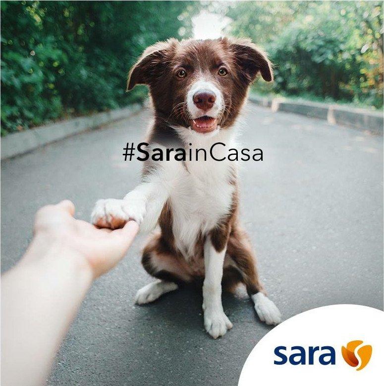SarainCasa