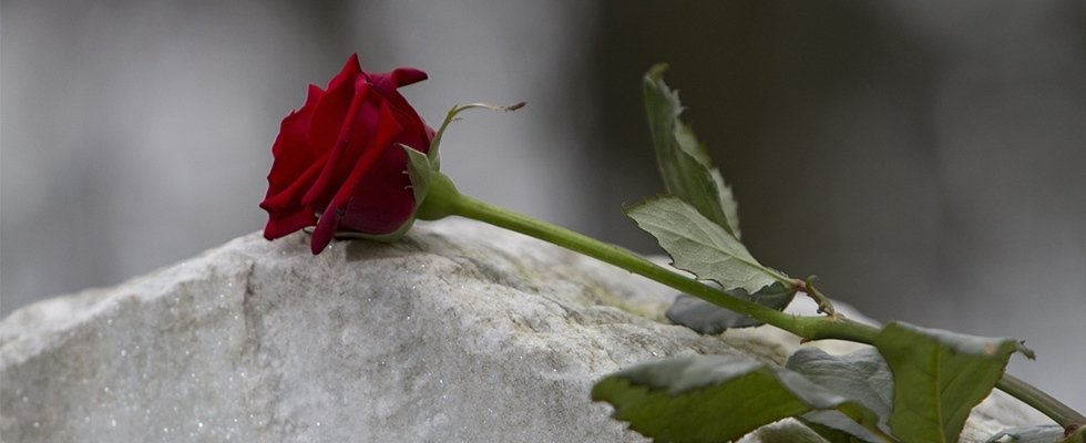 onoranze funebri - modena -marco melli