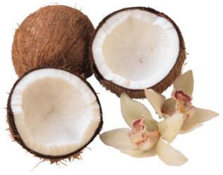 cocnuts