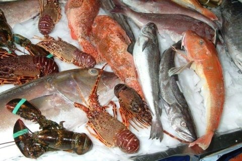 Crostacei e pesci freschi