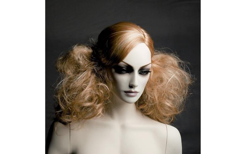 testa con capelli donna
