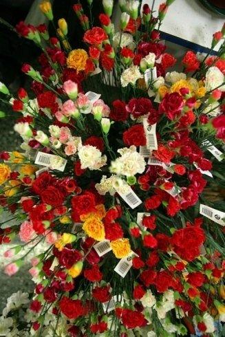 mazzi di fiori