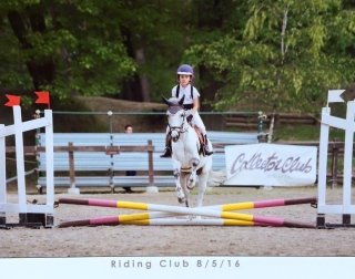 paddock, tondino coperto, club horse