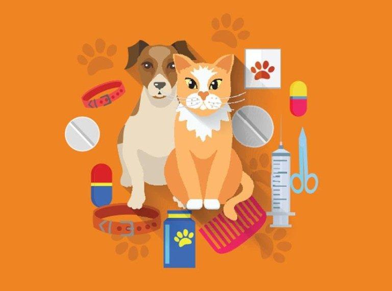 Pensione cani e gatti
