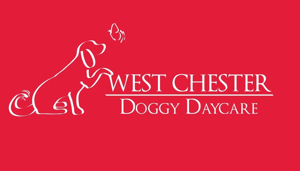 West Chester Doggy Daycare