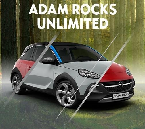 ADAM ROCKS UNLIMITED