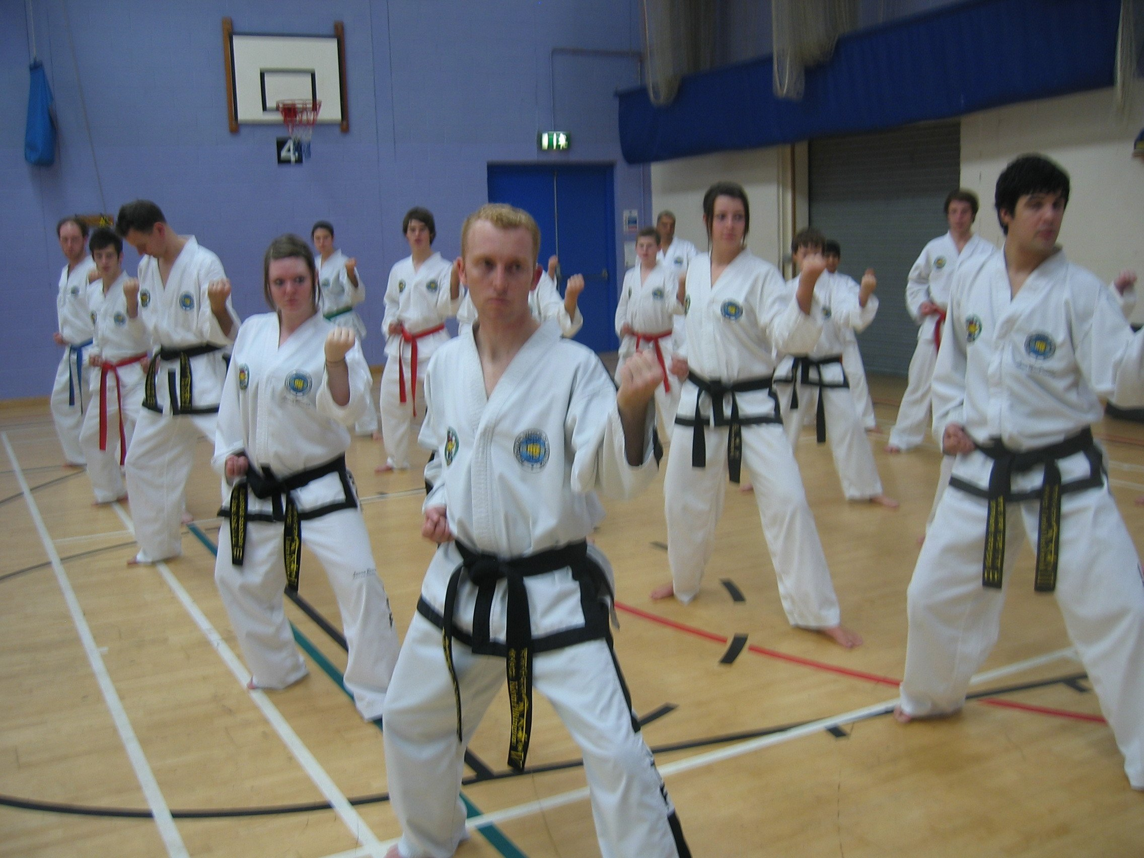 Adults Taekwon-Do