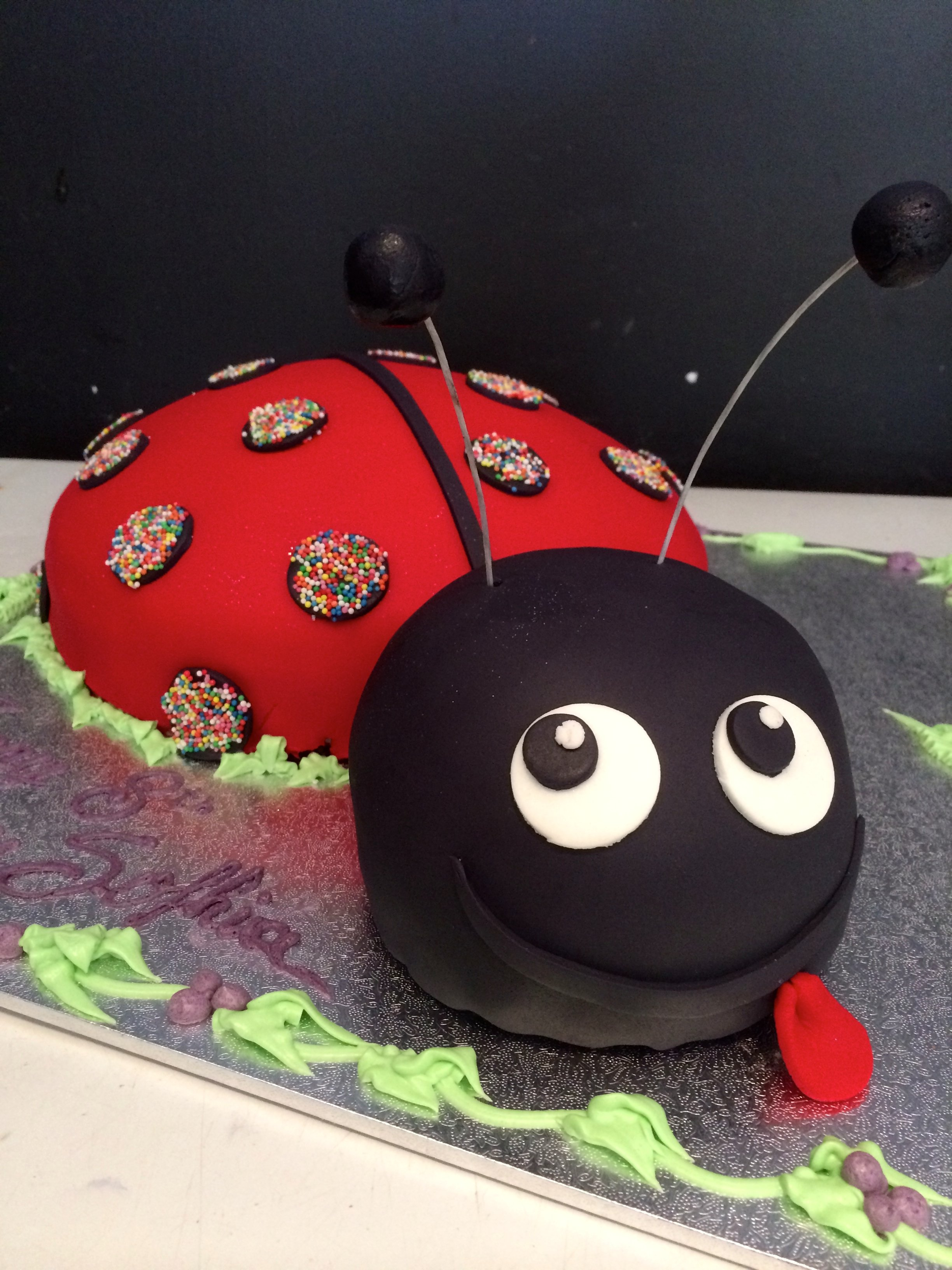 custom lady bird cake in red and black