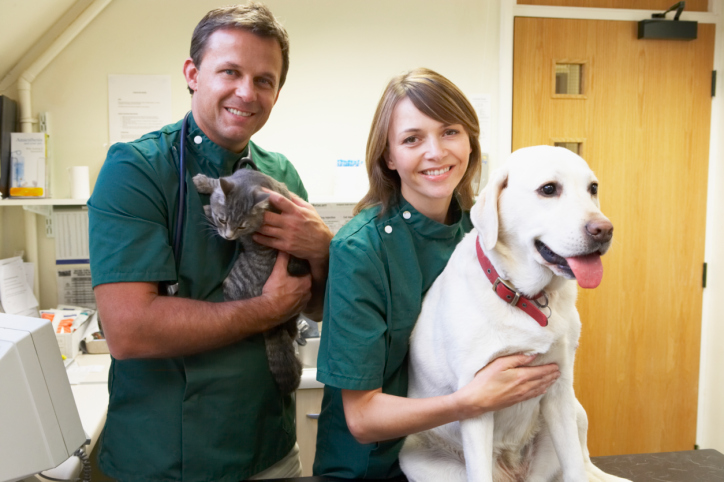 veterinary clinic in High Point, NC