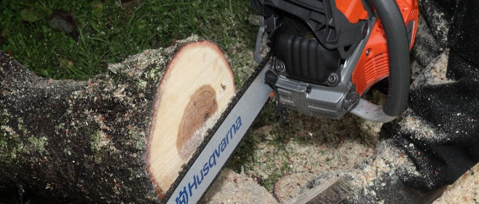 Blackwood Chainsaws
