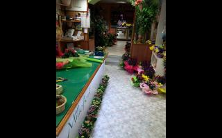Piante e fiori, Rieti