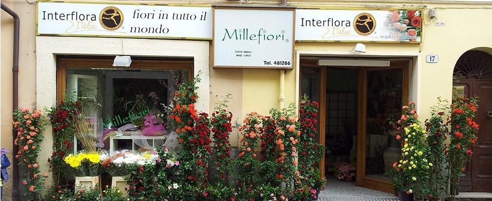 Piante e Fiori, Millefiori, Ranieri Bonomo, Rieti