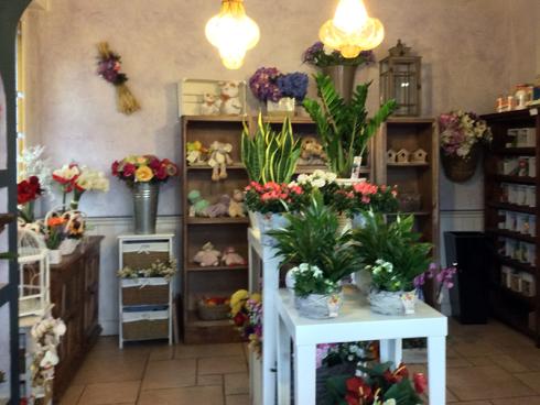 Il punto vendita dispone di azalee e gardenie, sempre fresche.
