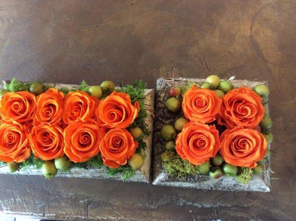 rose disidratate arancioni