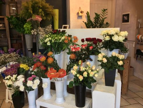 Volete acquistare delle piante sempreverdi e ornamentali? Recatevi da Sogni Fioriti.