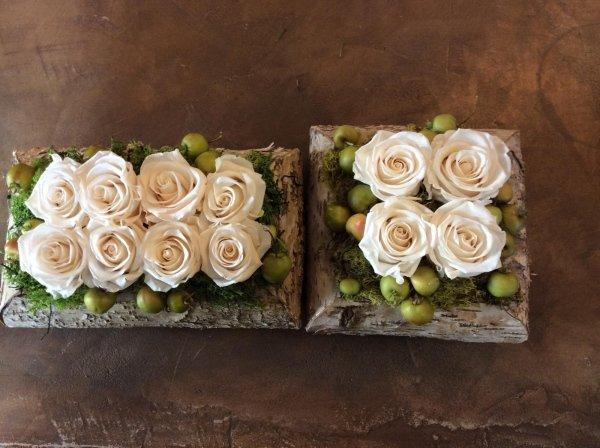 rose bianche disidratate