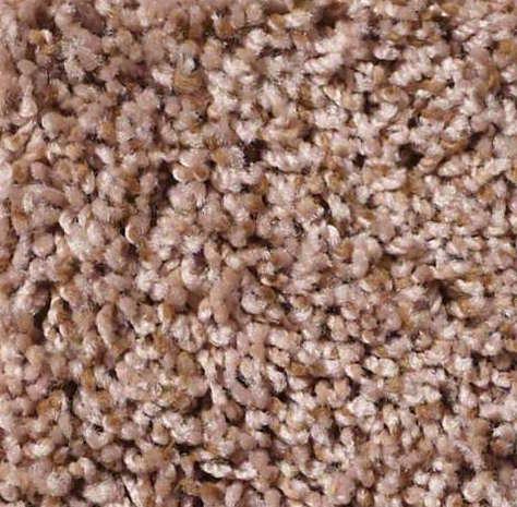 Shaw Floors Live Big Carpet